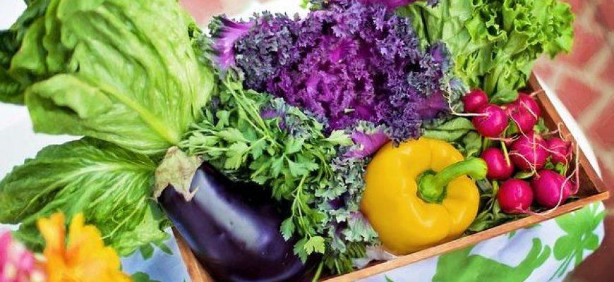 איך לשמור על תזונה נכונה גם עם עבודה במשמרות?
